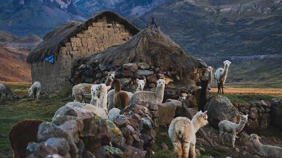 Salkantay Trek - Trail People